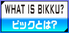 what is BIKKU?