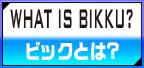 what is BIKKU?